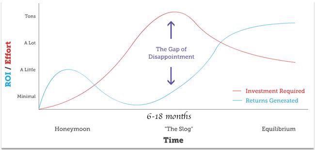 SEO Curve