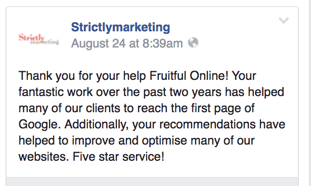 Fruitful Online SEO Review - SM