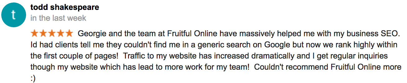 Fruitful Online SEO Review - Todd